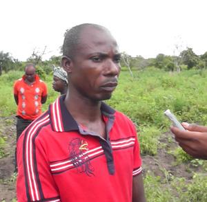 Ghana tomatoes