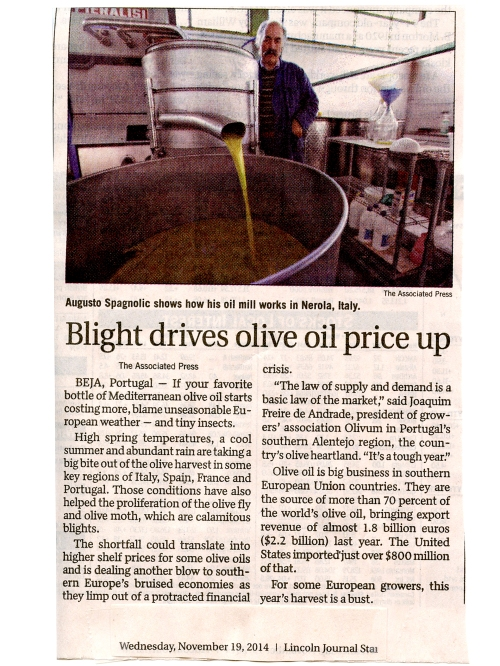 OLlive oil article LJStar081