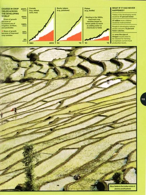 Green revolution p 2132