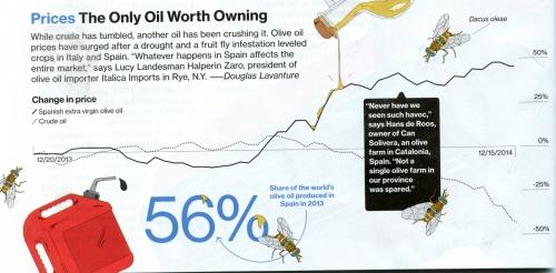 GPPN olive oil article217