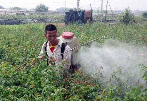 vietnam-farmer-pesticides