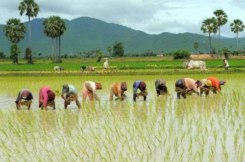 TOPSHOTS-CAMBODIA-ECONOMY-GROWTH-AID