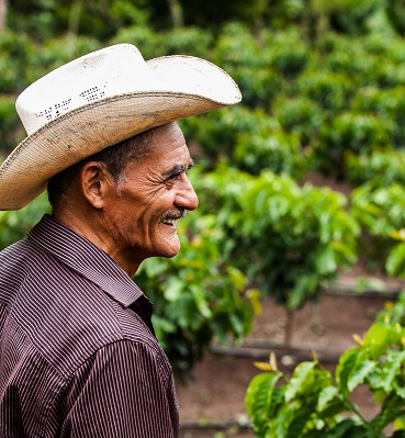 Ubaldo Sagastume in his coffee field