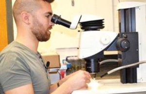 UK-university-explores-biological-ways-to-tackle-dubas-bug-menace_muscatdaily