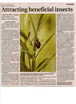 Attracting beneficial insects025