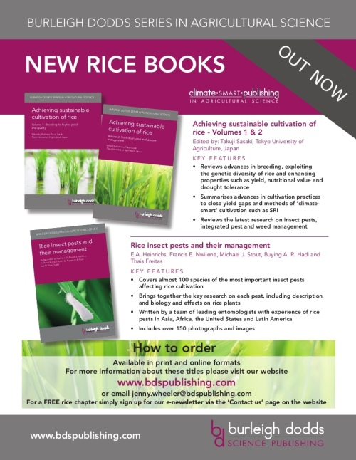 Rice_advert