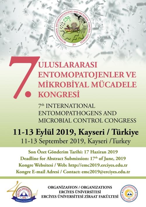 Turkey poster.jpg