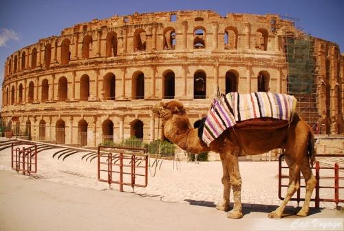 L'amphithéâtre romain d'El Jem, Voyage enTunisie