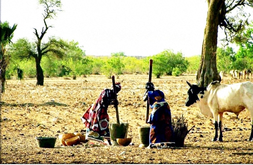 Mortar Mali Photo 1Doc2